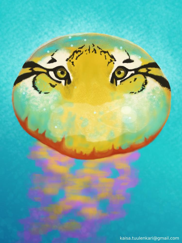 Tiger Medusa